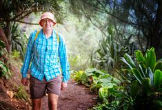 Hike in Hawaii. Hiker on the trail in green jungle, Hawaii, USA royalty free stock photos