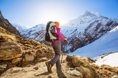 Hiker on the trek in Himalayas, Annapurna valley, Nepal. Hiker on the trek in Himalayas, Annapurna valley. Nepal royalty free stock images