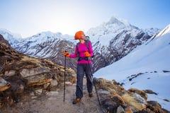 Hiker on the trek in Himalayas, Annapurna valley, Nepal Stock Photos