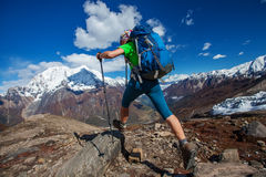 Hiker on the trek in Himalayas Royalty Free Stock Images