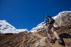 Hiker on the trek in Himalayas Stock Photography