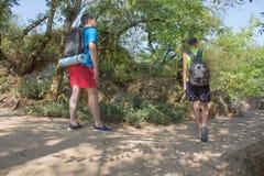Hiker trekking на следе в туристах группы леса исследуя природу идя через древесины Стоковое Изображение