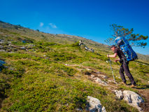 Hiker trekking in Crimea Royalty Free Stock Image