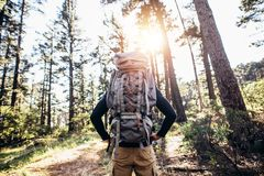 Hiker trekking in forest Stock Photography