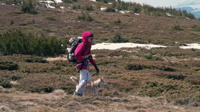 Hiker trekking with his husky companion slow motion stock video