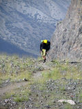 Hiker trekking in the mountains. Royalty Free Stock Photos