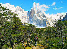 Hiker trekking in Patagonia, South America. Hiker trekking in scenic landscape with Cerro Torre in the background in Los Glaciares National Park, Patagonia stock image