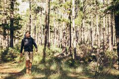 Man with a backpack walking in forest Stock Images