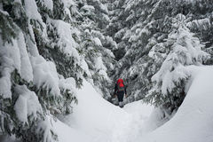 Hiker trekking in the winter Royalty Free Stock Images