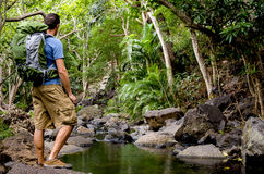 Hiker and Tropical River Royalty Free Stock Photography