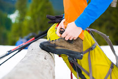 The hiker tying shoelace on the Shoe. royalty free stock photography