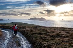 Hiker with view of Blasket islands stock photos