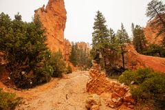 Hiker visits Bryce canyon National park in Utah, USA stock images