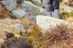 Hiker walking along a mountain footpath Stock Photos