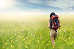 Hiker walking on the blossom meadow Stock Photos