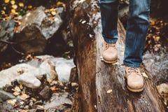 Hiker walking in boots closeup. Hiker wearing boots walking across river in autumnal forest. Footwear on man's legs closeup outdoor. Male seasonal shoes Royalty Free Stock Photo