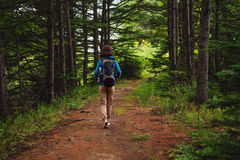 Hiker walking on forest path Royalty Free Stock Photo