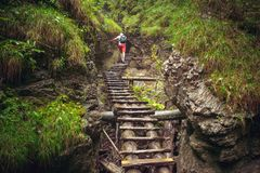 Hiker walking hard way through the canyon. In the Tatra Mountains, Slovakia. The abandoned old wooden bridge going in deep wild forest. Outdoor extreme leisure Royalty Free Stock Photography