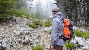 Hiker walking outdoors wearing hiker backpacks. Hiker walking through the blue pine forest towards the Tahtali mountain peak in Turkey, Antalya province wearing stock footage