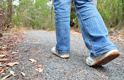 Hiker walking on track in the bush on mountain Royalty Free Stock Photo