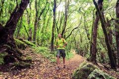 Hiker walking trekking in green forest Royalty Free Stock Image