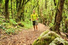 Hiker walking trekking in green forest Stock Images