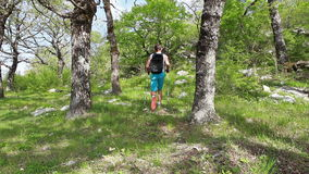 Hiker walking trought forest stock video