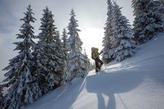Hiker walking in winter Carpathian mountains Stock Image