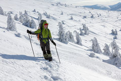 Hiker walking in winter Carpathian mountains Stock Photography