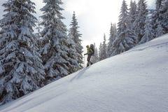 Hiker walking in winter Carpathian mountains Royalty Free Stock Image
