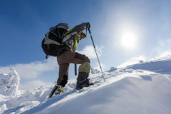 Hiker walking in winter Carpathian mountains Royalty Free Stock Photo
