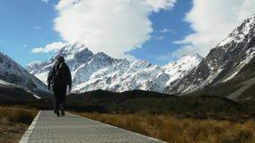 Hiker walks the trail in valley. A hiker walks the trail in valley with mt cook in the background stock video