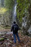 Hiker and waterfall. In pluvial forest Royalty Free Stock Photo