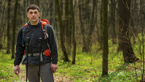 Hiker wearing hiking backpack and jacket on hike in forest. Man using hiking sticks poles outdoors in woods. Male hiker standing looking away Stock Image