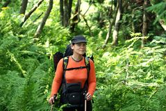 Hiker in the wild forest Royalty Free Stock Photos