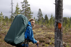 Hiker in the wilderness of Norway Stock Photography