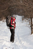 Hiker in winter forest Stock Photos