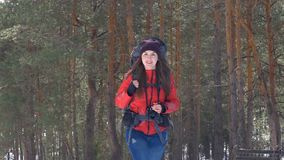Hiker in a winter forest. HD. stock video footage