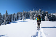 Hiker in winter mountains Stock Image