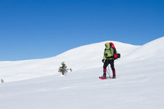 Hiker in winter mountains snowshoeing. Stock Image