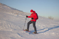 Hiker in winter mountains snowshoeing. Royalty Free Stock Images