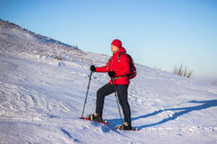 Hiker in winter mountains snowshoeing. Stock Photos