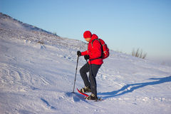 Hiker in winter mountains snowshoeing. Stock Images