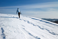 Hiker on the winter snow field Royalty Free Stock Images