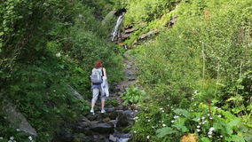 Hiker woman with backpack walking on a forest trail in the mountains on the background a waterfall. Hiking. Adventure in stock footage