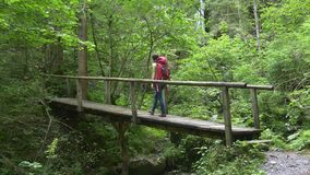 Hiker woman crosses bridge walking to waterfall stock footage