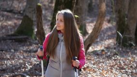 Hiker woman hiking in forest. Hiker woman hiking in autumn forest stock footage