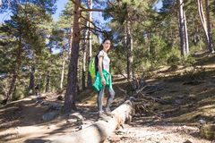 Hiker woman posing on a great trunk lying in forest Royalty Free Stock Photography
