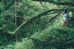 Hiker woman resting near the tree Stock Image