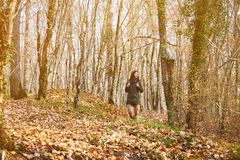 Hiker woman walking in autumn forest Royalty Free Stock Image